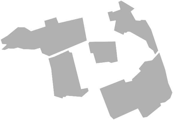 The Octagon map